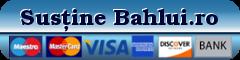 buton donatie Bahlui